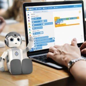 AlphaMini voor programmeerlessen