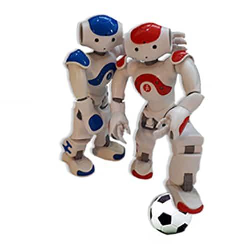 Robot lesmateriaal Vriendschap
