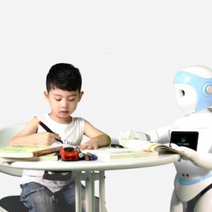 robot als coach, IPALcoach